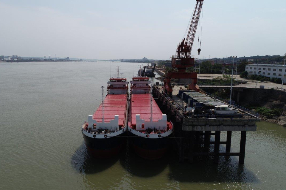 Alewijnse to Supply Electrical Systems for Two Combi Freighters