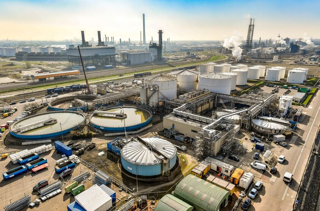 Shell plans to build giant biofuels facility in Rotterdam
